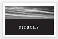 Stratus Vineyards company